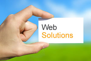 Web Solutions Provider