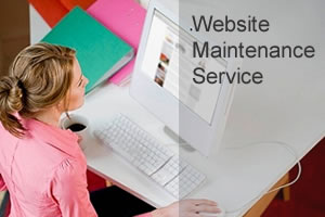 Website Maintenance Services Qatar, We will provide you website maintenance services